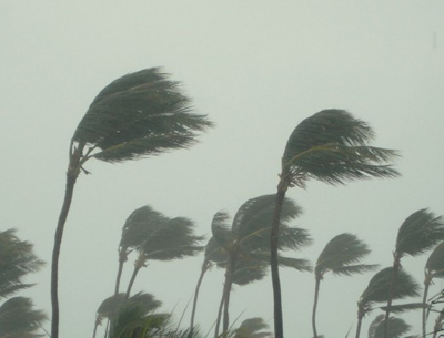 wind damage claims hurricane-insurance-claim-public-adjuster-2-miami-appraisal-services